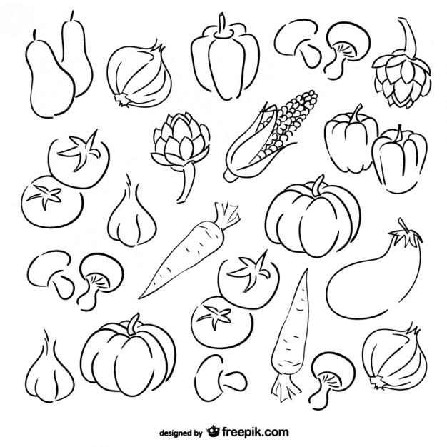 626x626 Vegetables Sketch Set Vector Free Download