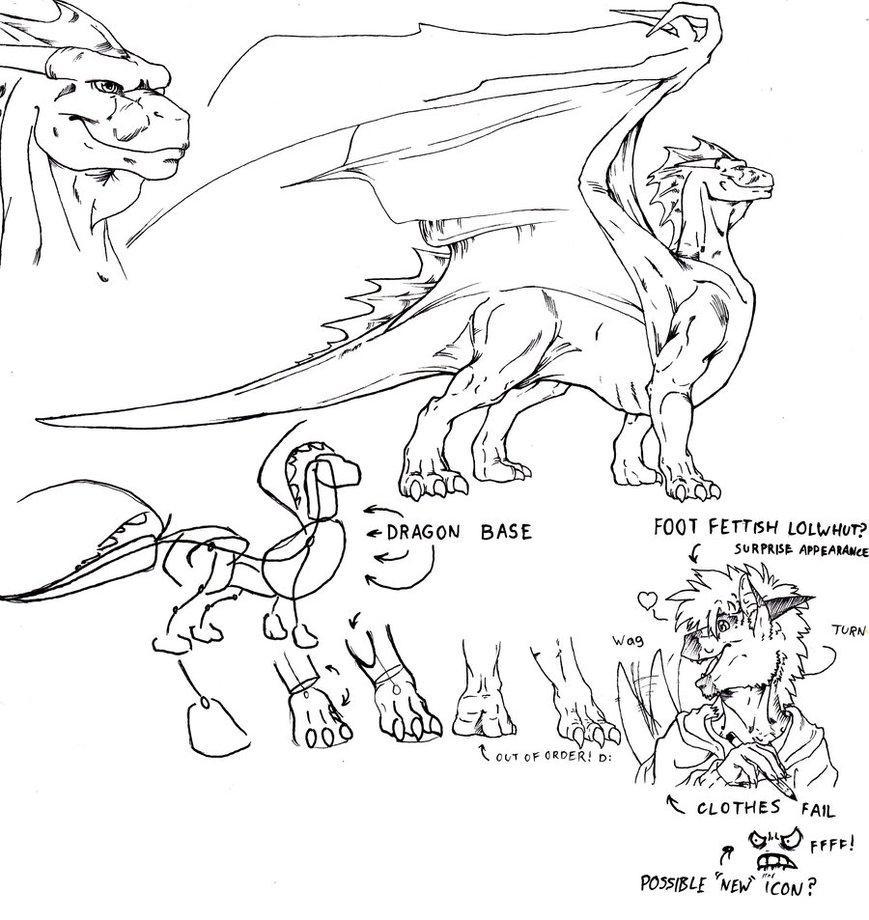 869x920 Dragon Anatomy 1 By Gl1tch Cr3at0r