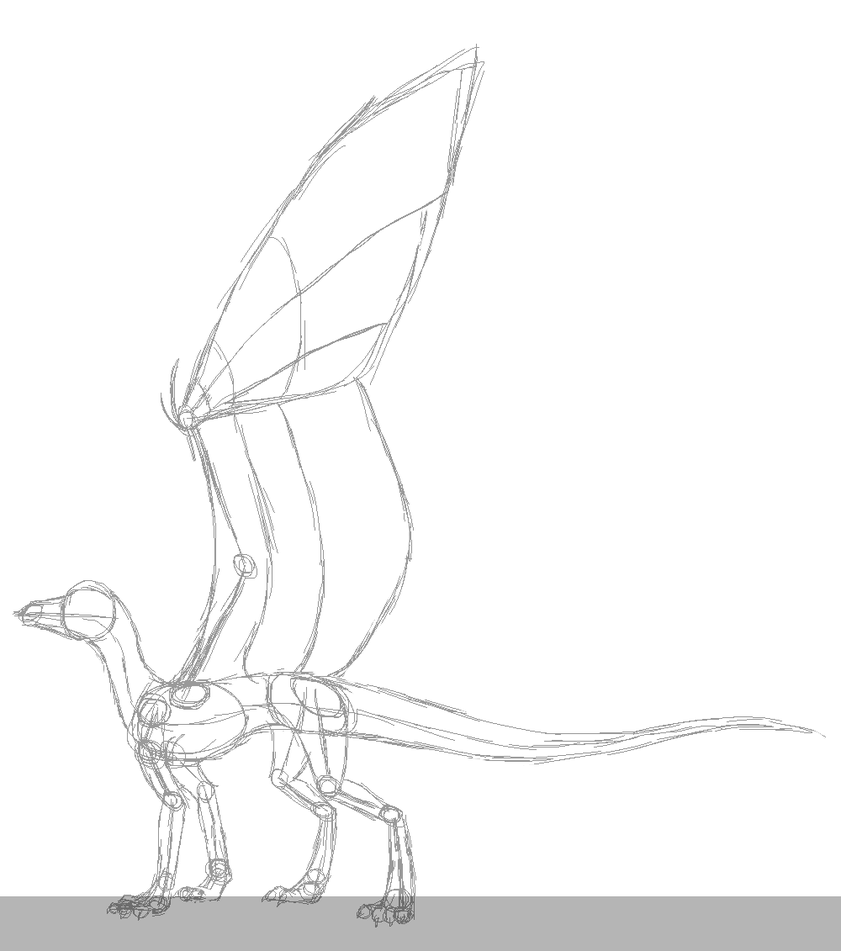 Dragon Anatomy Drawing at GetDrawings.com | Free for personal use ...