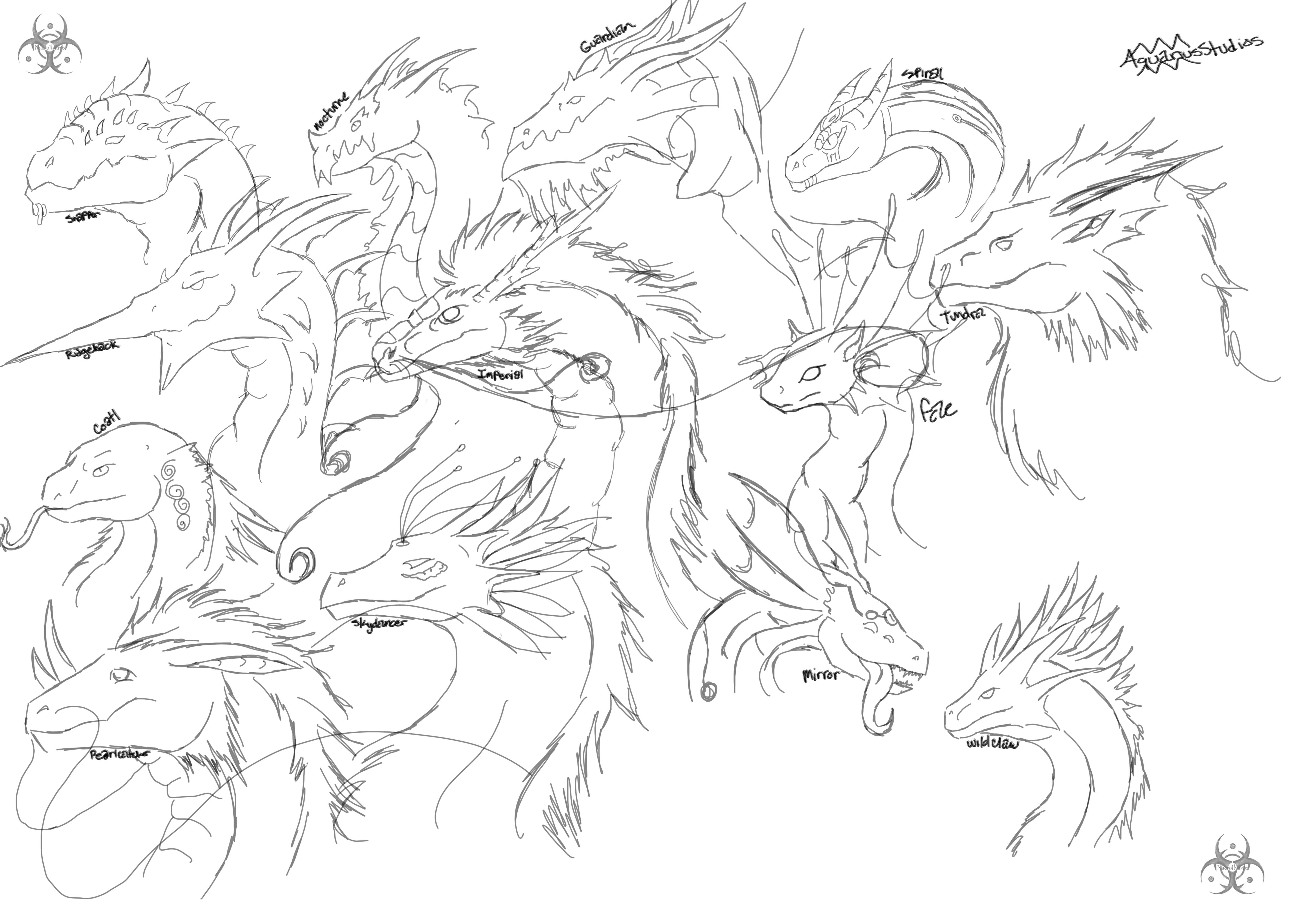 5371x3814 Flight Rising Dragon Sketches By Arkhelios