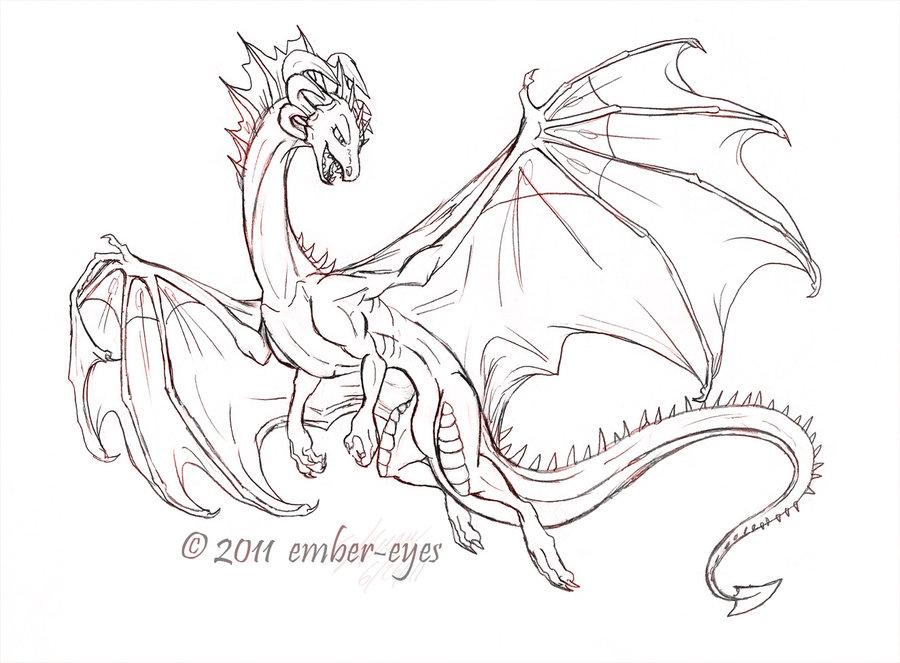 900x663 Western Dragon Sketch By Ember Eyes