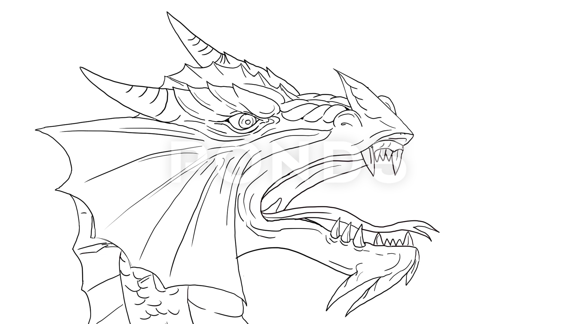 Dragon Breathing Fire Drawing at GetDrawings   Free download