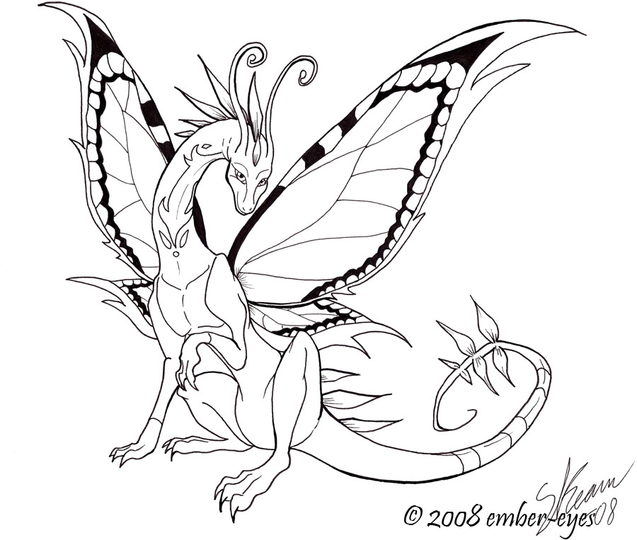 900x763 Butterfly Dragon Line Art By Ember Eyes
