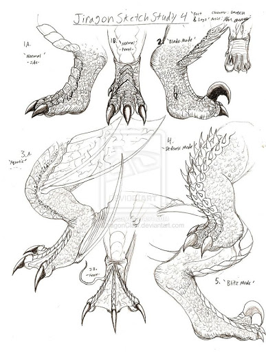 387x512 How To Draw Dragon Claws Jiragon Arm And Claw Sketches Popular