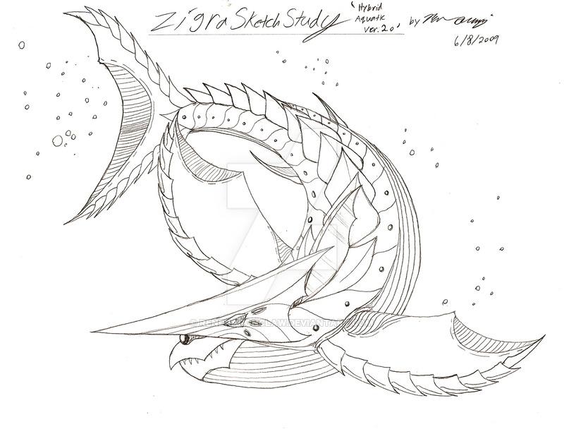 800x615 Zigra Sketch Study Aquatic 2.0 By Rendragonclaw