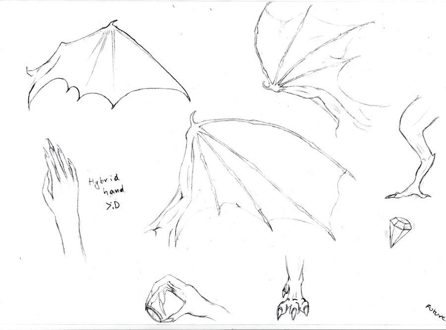 900x667 Dragon