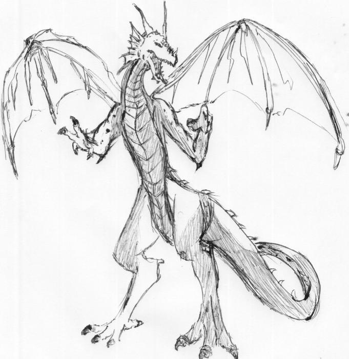 681x701 Dragon Claws Drawing