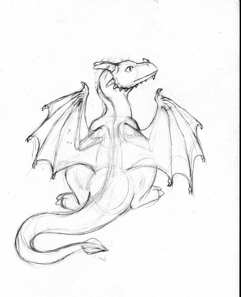 800x983 How I Draw A Dragon