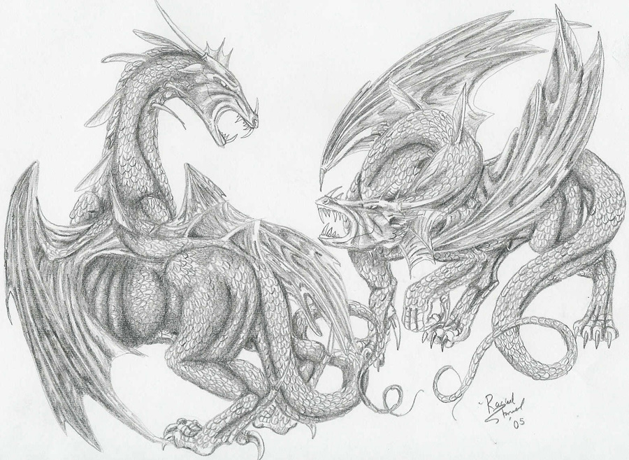 900x658 Drawn Dragon Dragon Fighting