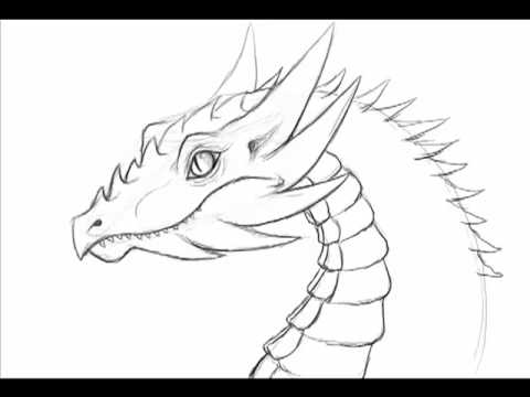 480x360 How To Draw A Dragon