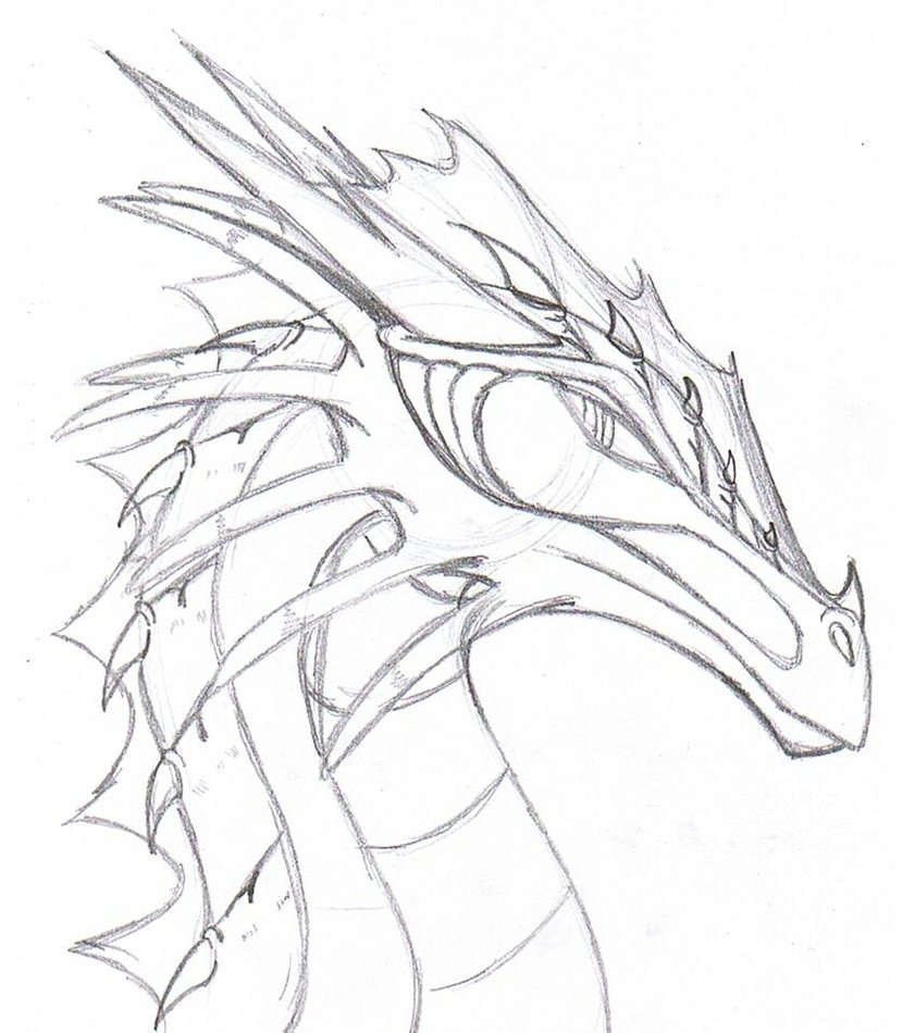 841x950 Realistic Dragon Drawings