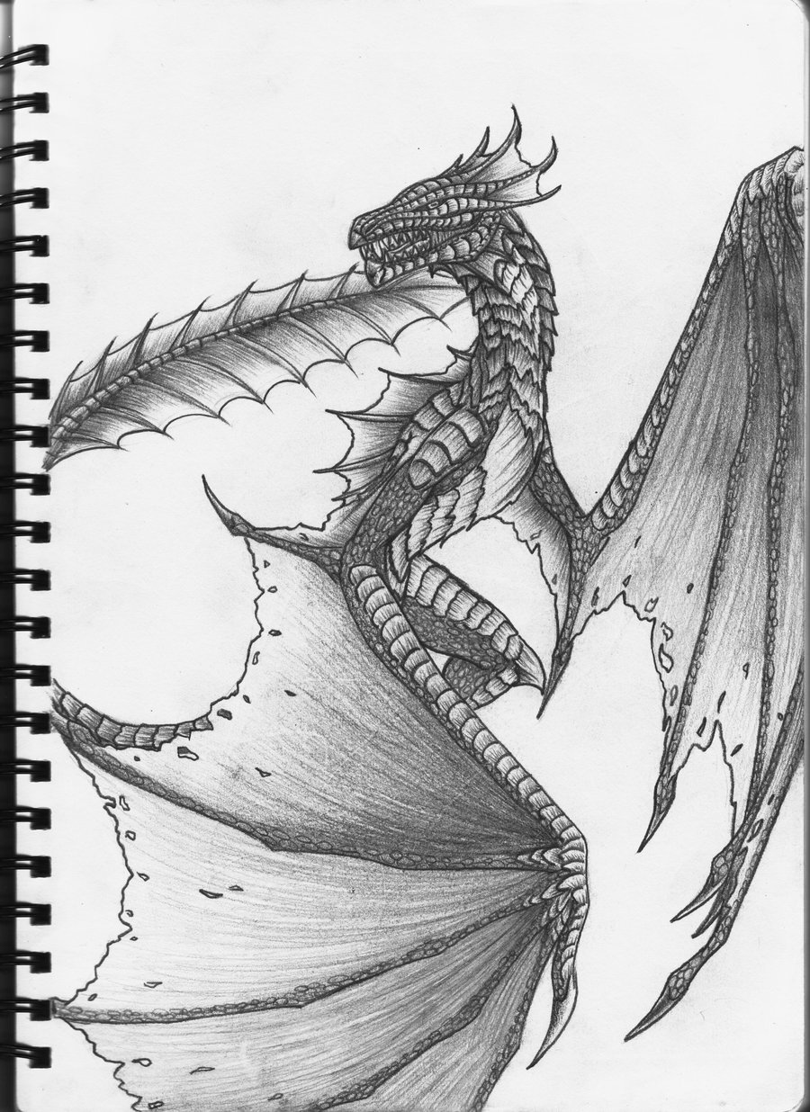 900x1236 Drawn dragon skyrim dragon