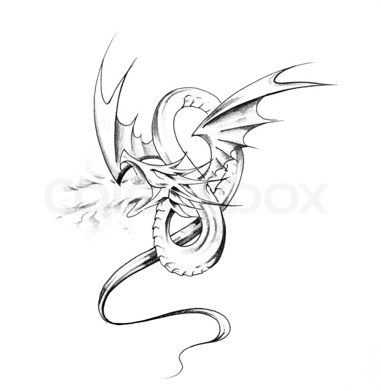 780x800 Sketch of tattoo art, dragon Stock Photo Colourbox