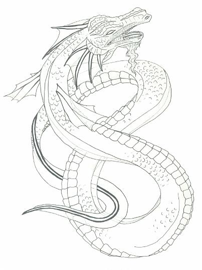 403x540 dragon pencil sketch by nitrocess on deviantart