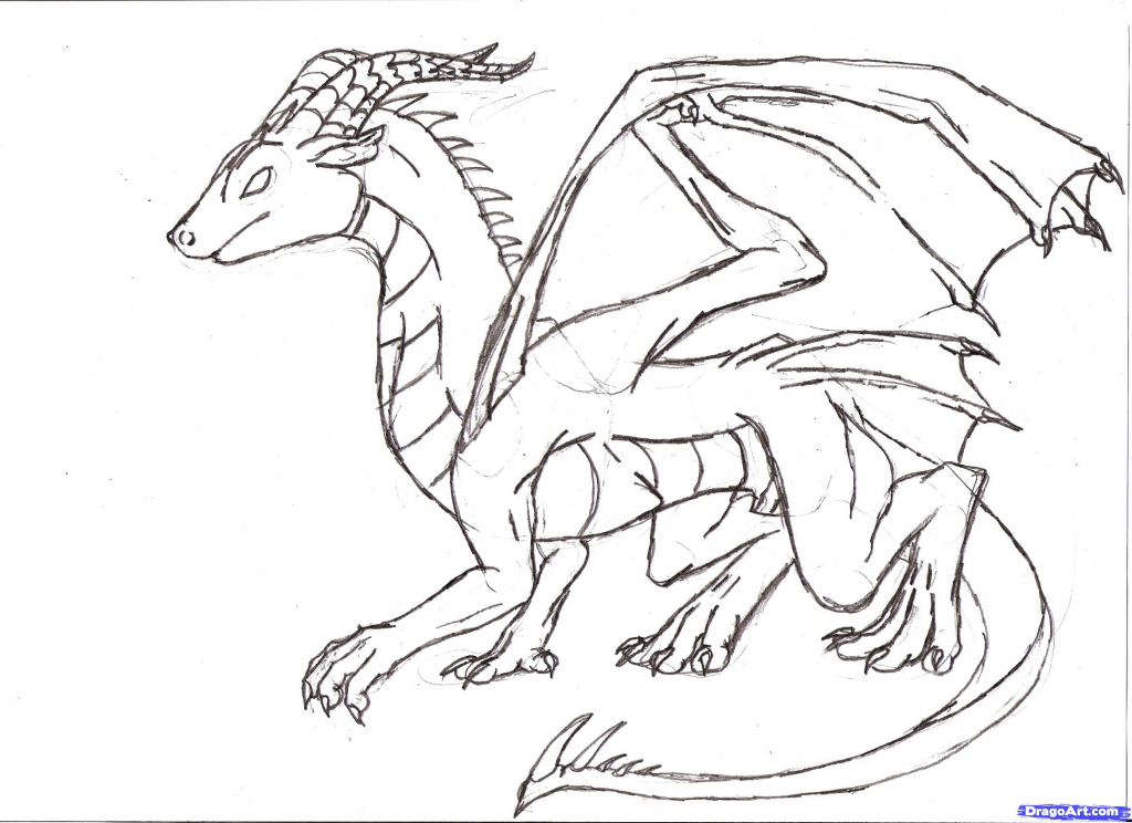 1024x744 How To Draw A Basic Dragon Simple Dragon Drawing Pencil Sketch