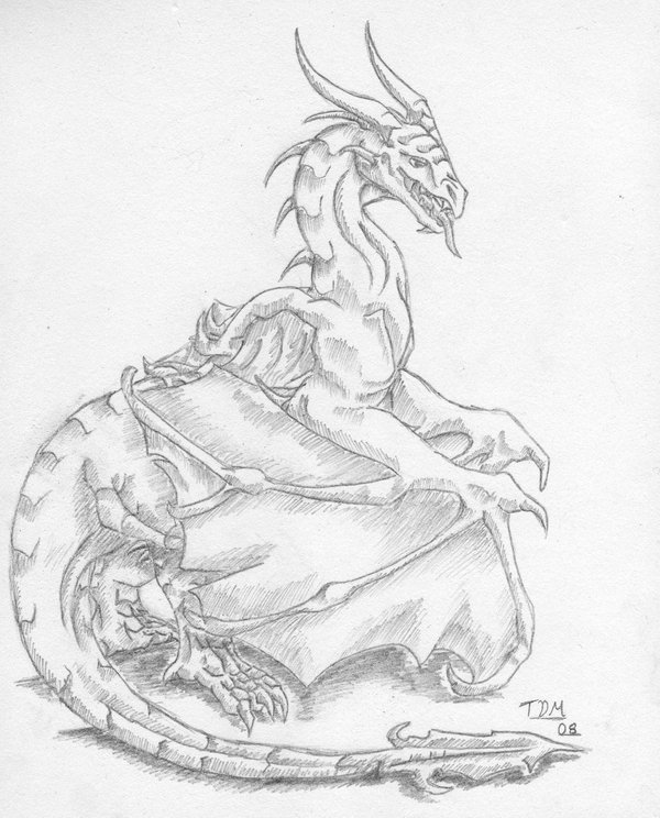 600x744 pencil dragon i by thedragonmystic on deviantart