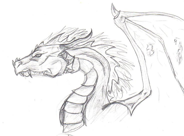 736x547 Pin by Toia Brown on Dragons and Hunters Pinterest Dragon head