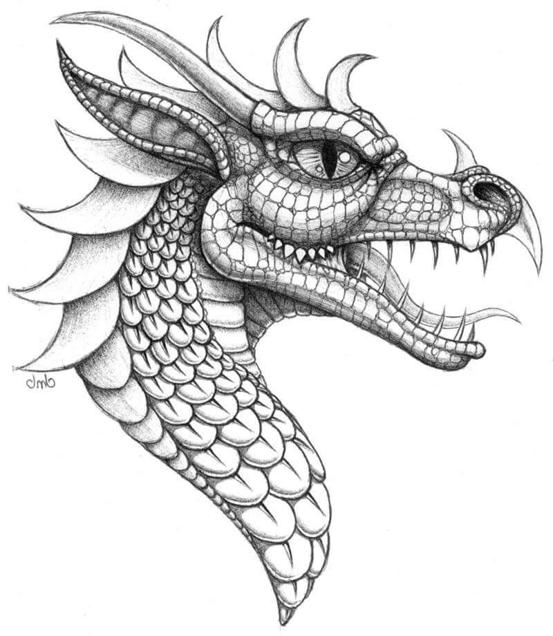800x920 Resultado De Imagen Para Dragon Chino Con Rosa China Jesus