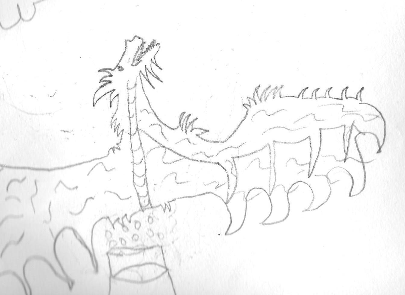 1344x978 Dragon Pencil Sketches Dragonsandmorebyrish
