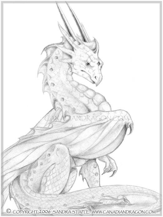 522x697 Canadian Dragon Fantasy Art Original Pencil Dragon Drawing, Pride