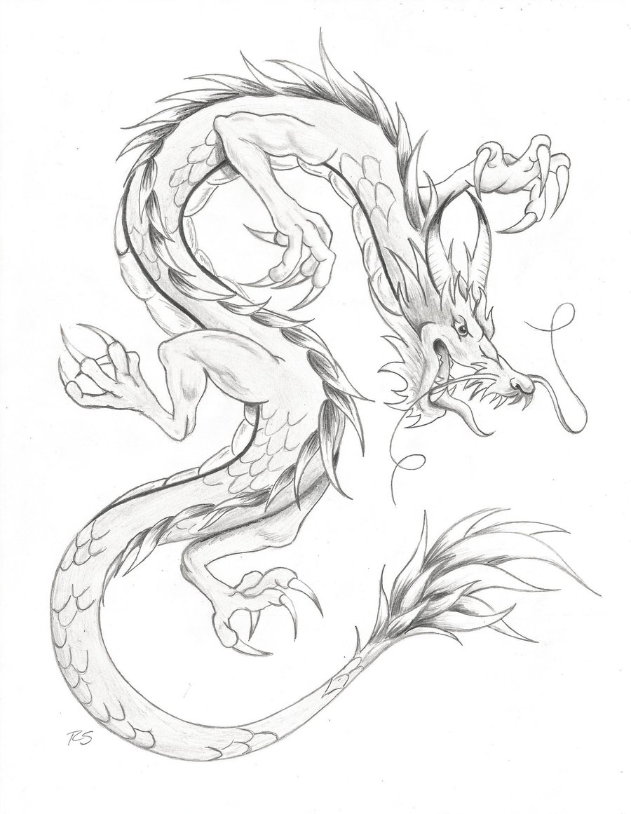 900x1161 Chinese Dragon Drawings In Pencil