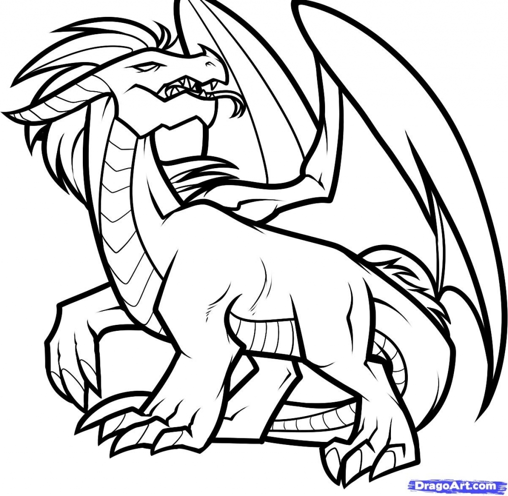 1024x1000 Dragon Outline Drawing