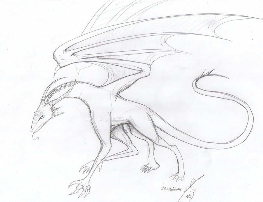 900x691 A simple dragon sketch by Bruneburg on DeviantArt
