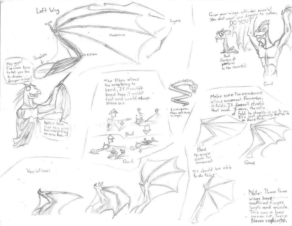 1017x786 Dragon Wing Tutorial By Orgeston
