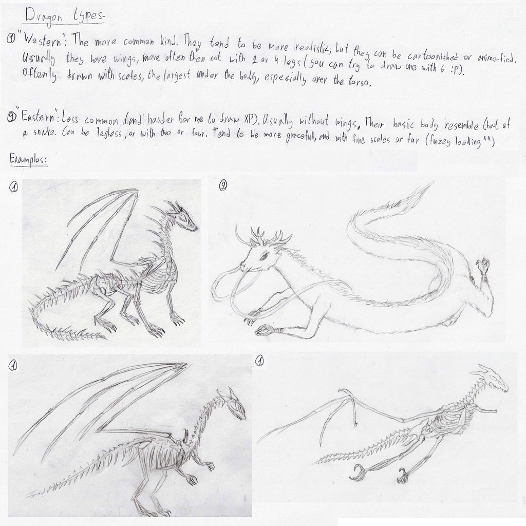 1024x1024 Dragon Tutorial Part 3 Types By Lathrin