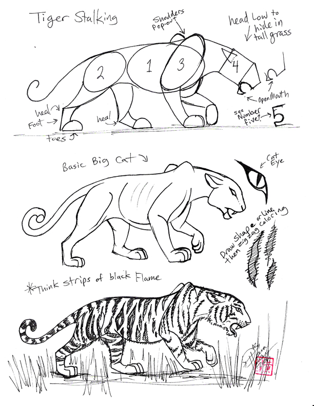 612x792 Draw A Tiger By Diana Huang