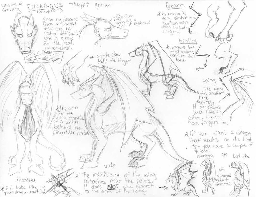 1024x789 Dragon Tutorial By Qorter