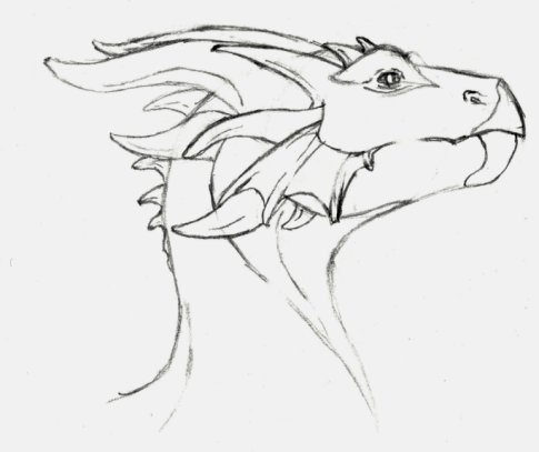 485x407 Dragon Head Sideview By Otakiaskogur