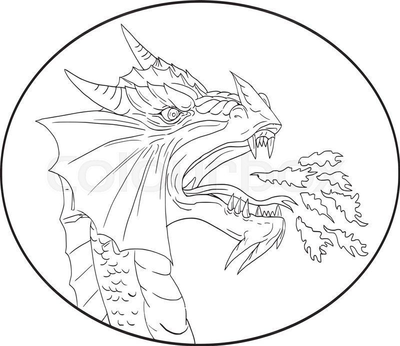 800x693 Drawing Sketch Style Illustration Of A Dragon Breathing Fire