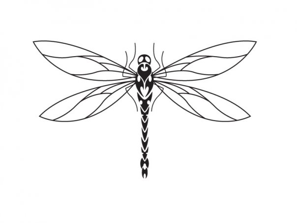 604x453 Dragonfly Tattoo Design By Micma