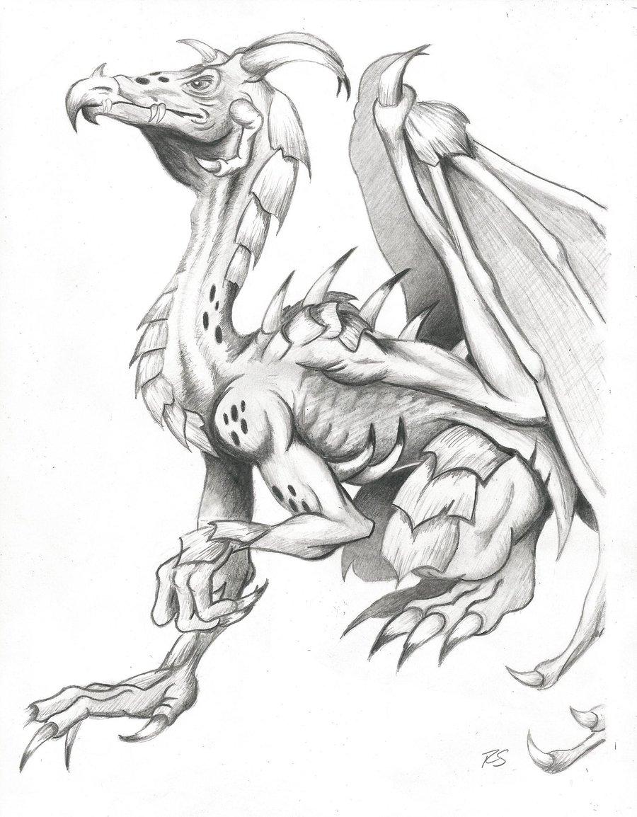 900x1154 Drawn Dragon Medieval Dragon
