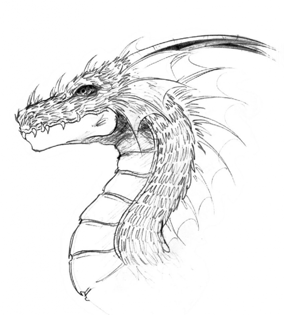 922x1024 Cool Drawing Of Dragons Cool Drawings Of Dragons Head 3 Decoration