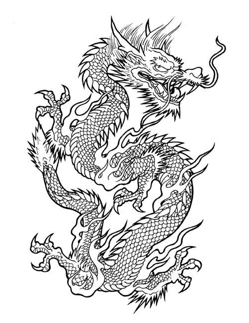 501x649 Drawn Chinese Dragon Asain