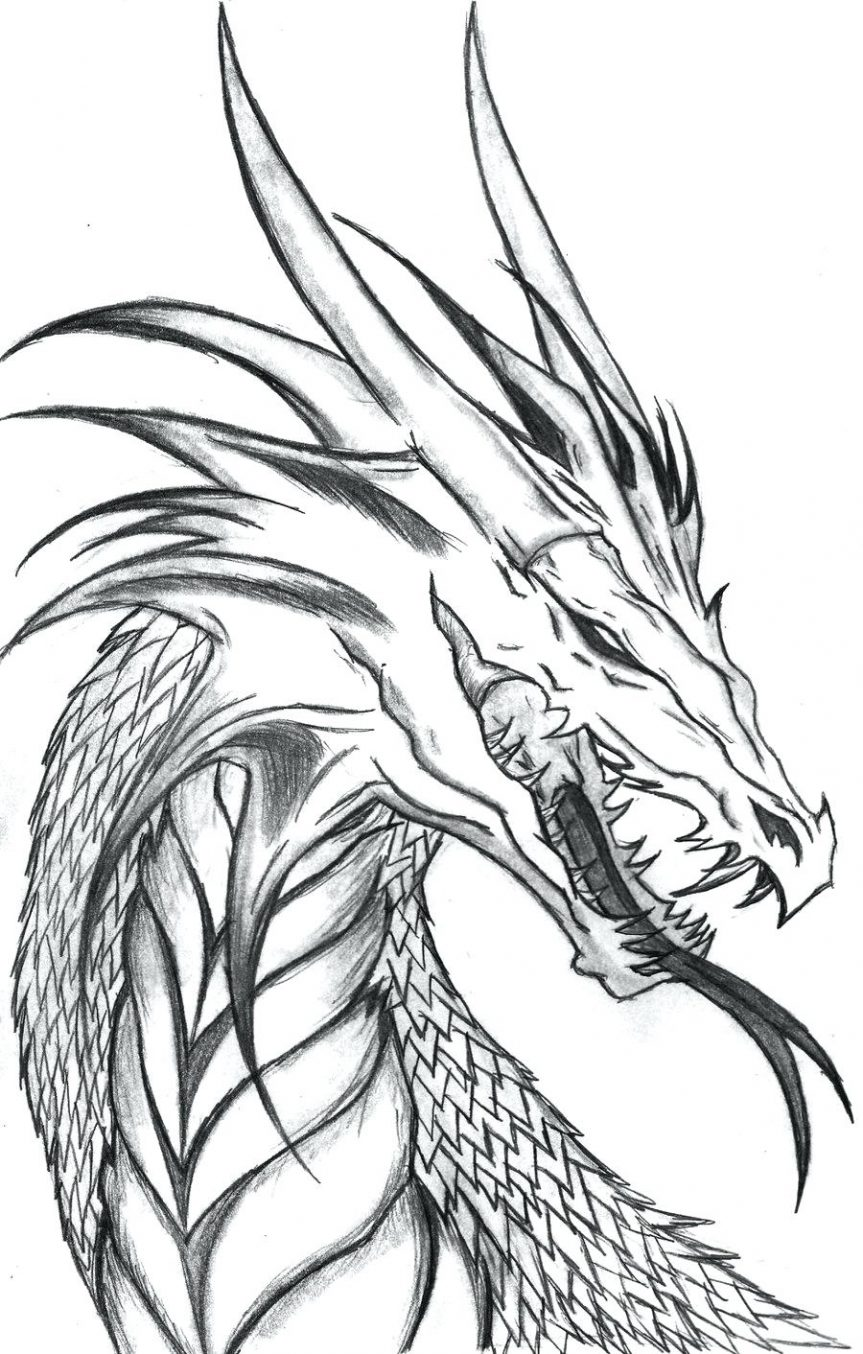 863x1354 Dragon Head Side Profile By The On Free Tattoo Outlines Designs