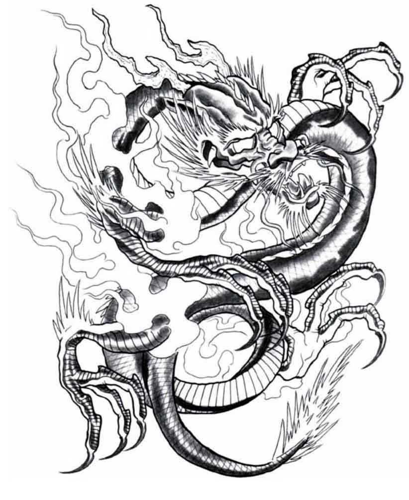 Dragon Tattoo Drawing At Getdrawings Com Free For Personal Use