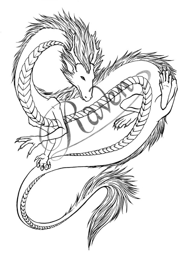 600x845 Dragon Tattoo Design By Aussie Raven
