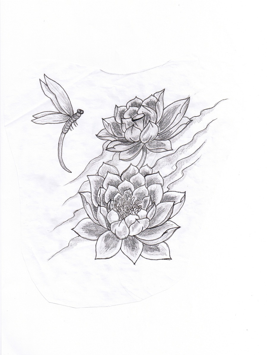 Dragonfly Drawing Tattoo At Getdrawingscom Free For