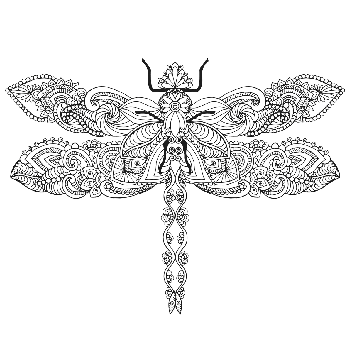 Dragonfly Line Drawing At Getdrawings Free For Personal Use