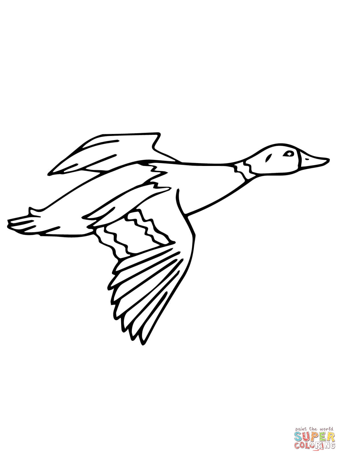 1200x1600 Flying Mallard Drake Coloring Page Free Printable Coloring Pages