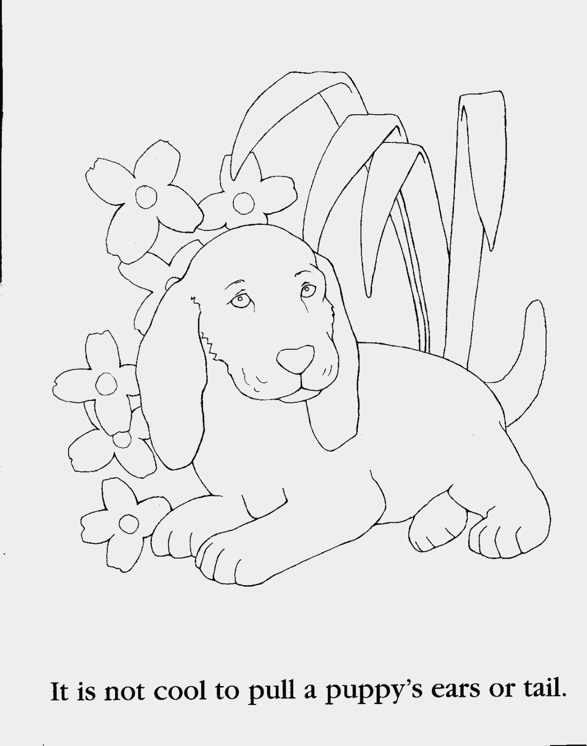 1147x1457 Animal Coloring Pages For 8 Year Olds