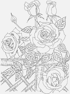 236x317 Online Coloring Pages For Adults Color Bros