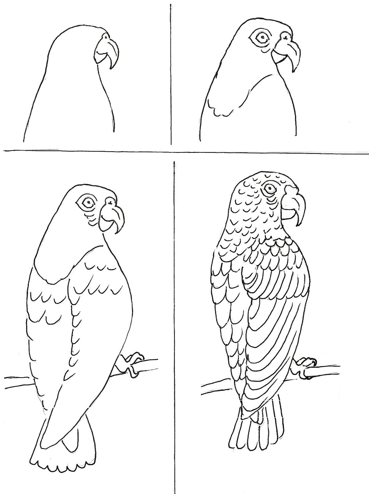 1195x1600 Art Class Drawing Ideas Parrots Art Class Ideas He Takes