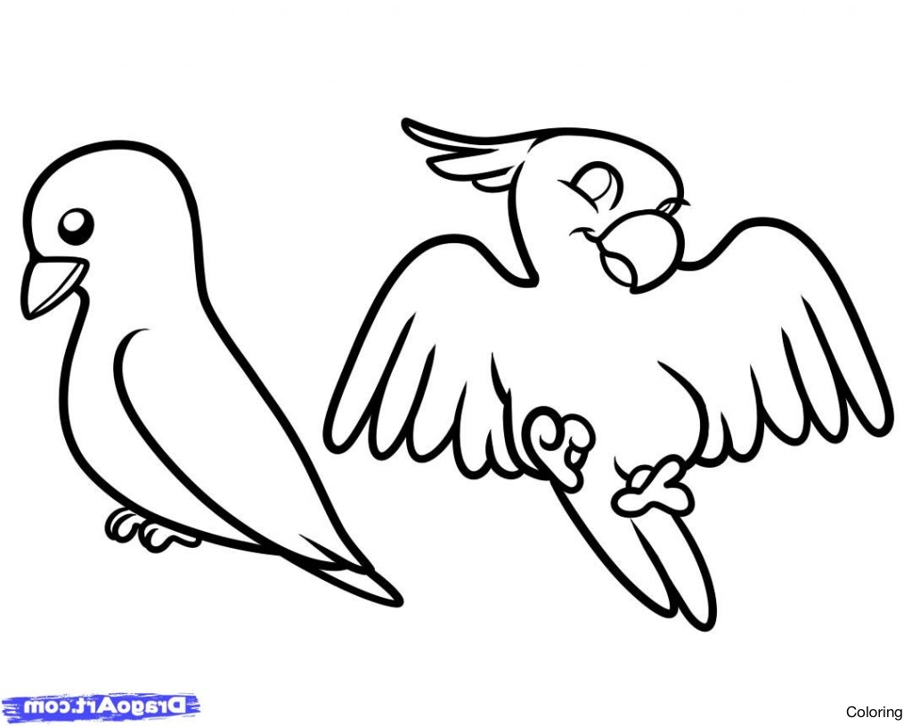 1024x815 Birds Drawing For Kids How To Draw A Bird Stepstep Easy