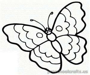 300x250 Butterfly Coloring Pages For Kids