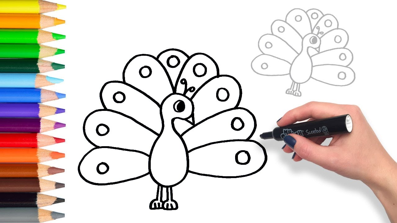 1280x720 How To Draw A Colourful Peacock Teach Drawing For Kids