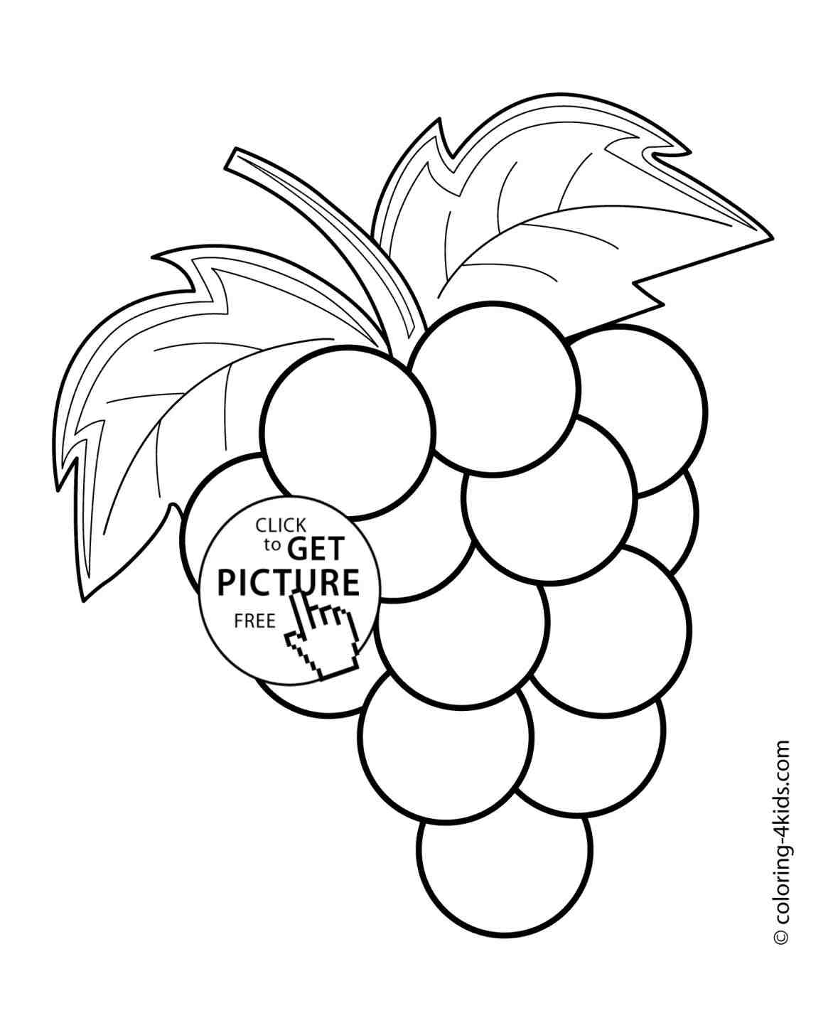 1172x1425 The Images Collection Of Printable Brinjal How To Draw